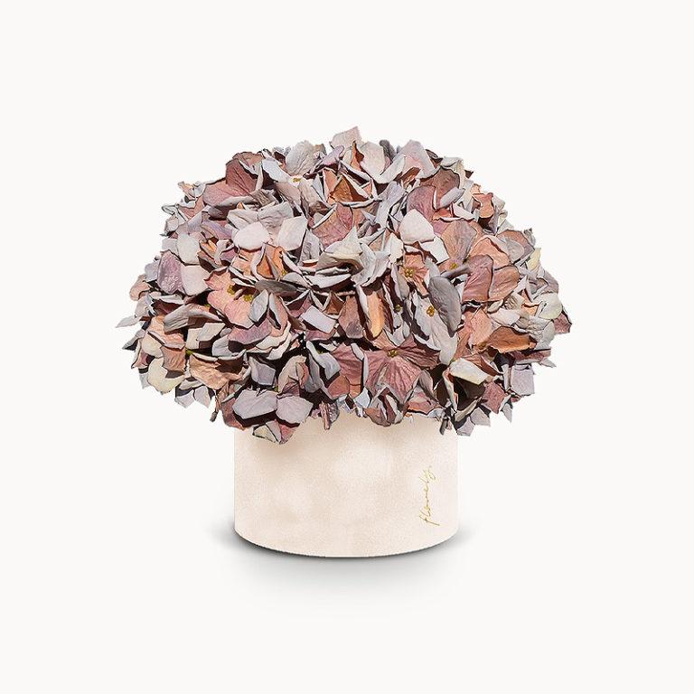 średni flowerbox z hortensjami