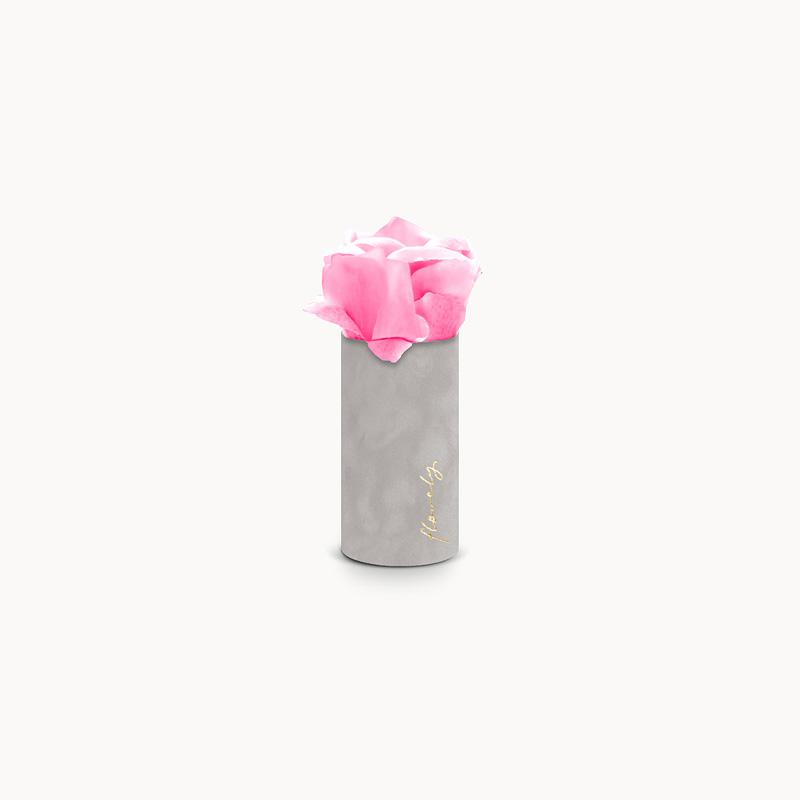 flower box prezent