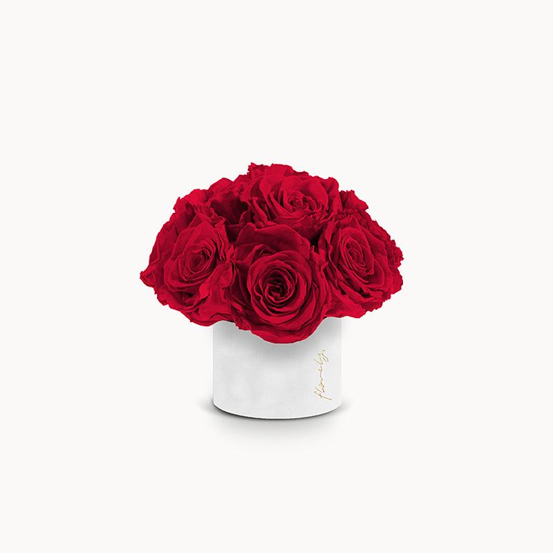 flower box z czerwonymi różami