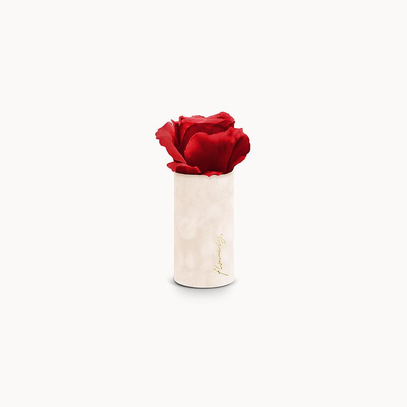 flower box z czerwoną różą