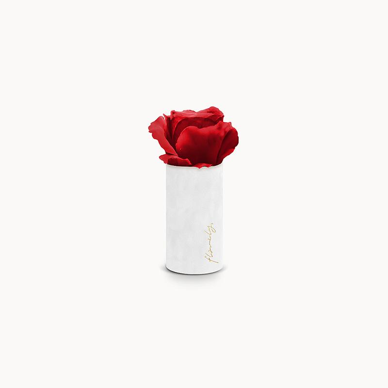 flower box z różą