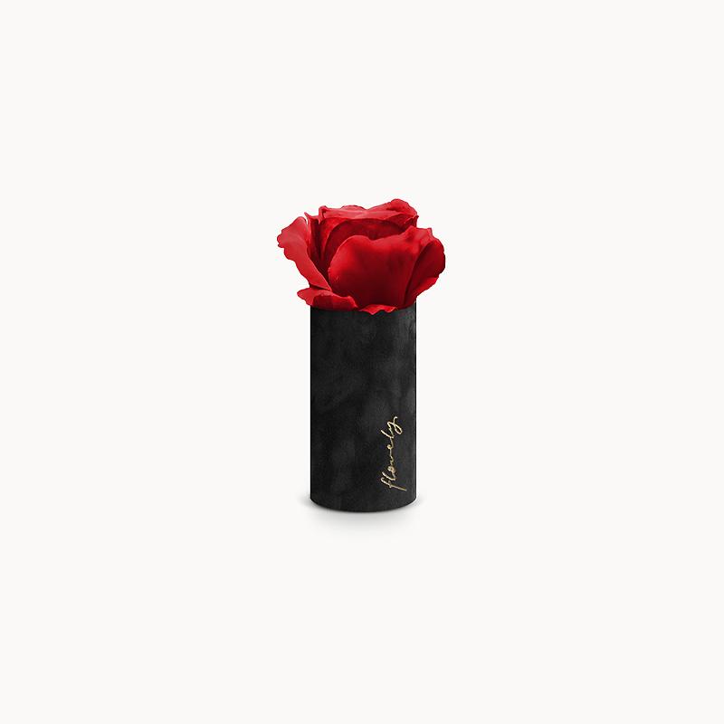 Wieczna czerwona róża flower box