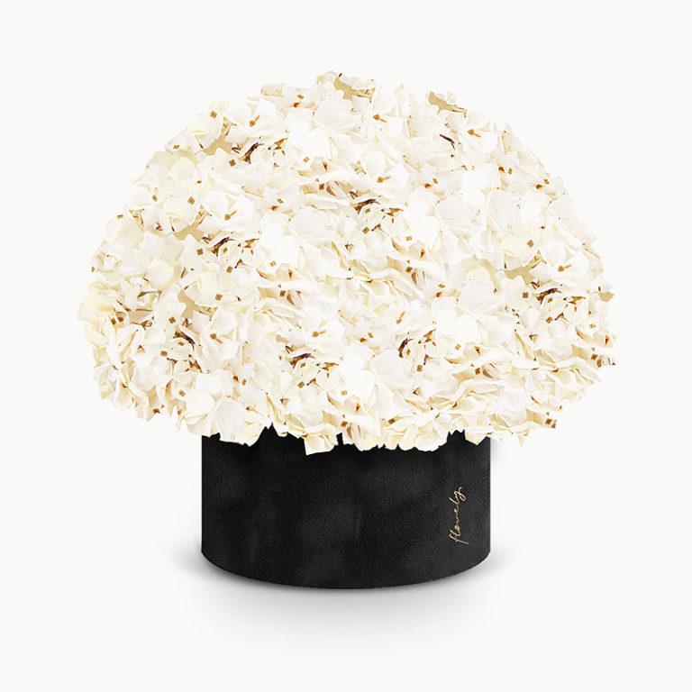duży czarny flowerbox z hortensjami