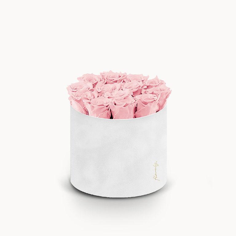 flower box wieczne roze