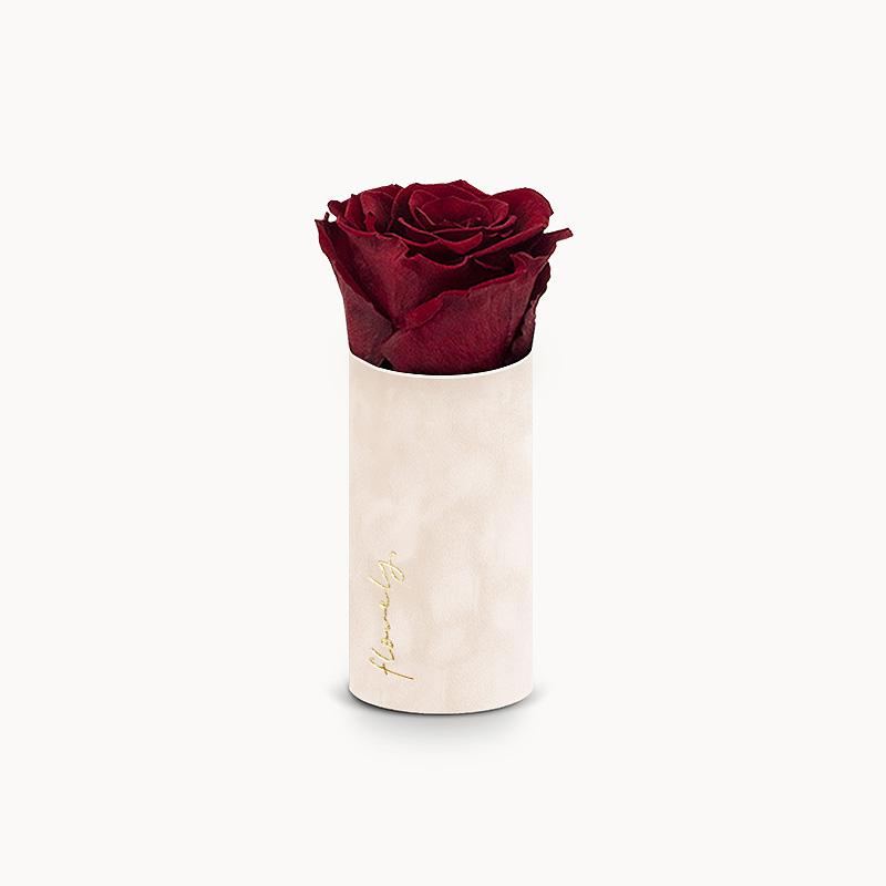 flowerbox z wieczną różą