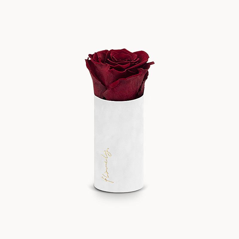 wieczna róża walentynki